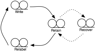 Short term tape rotation lifecycle