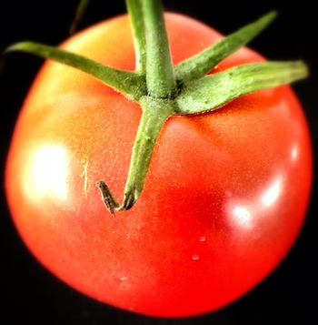 Data protection lessons from a tomato
